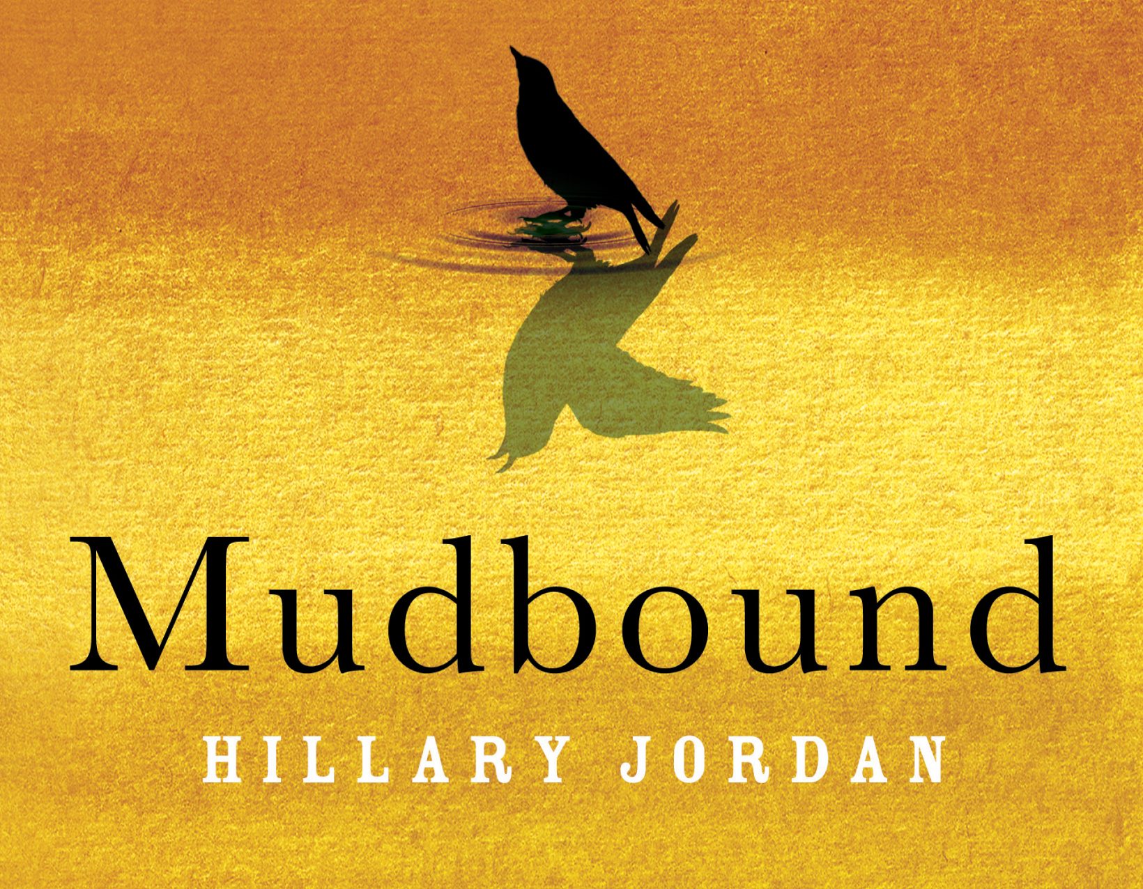 Mudbound Cover Cropped